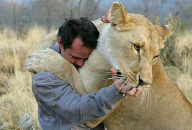 Kevin Richardson - The Lion Whisperer