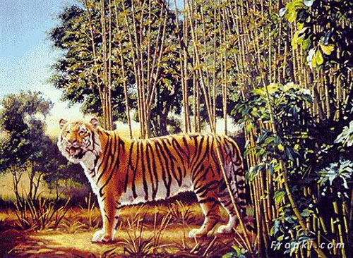 The Hidden Tiger Puzzle